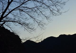 仁淀ブルーす1.jpg