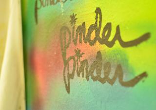 PINDER7.jpg