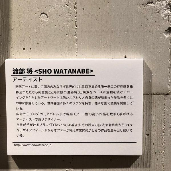 VANS-Cloveru-SHO-WATANABEブログ5.png